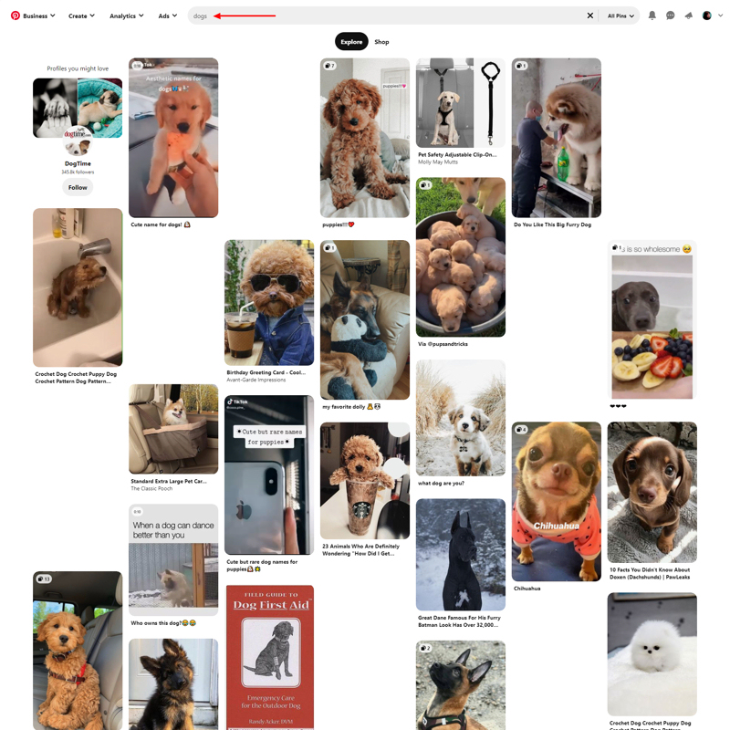 Pinterest Search Dogs